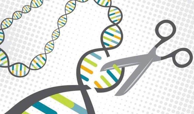 高盛最新报告捅破医药产业潜规则,疗效太好反断药厂金脉!并称中国在基因编辑领域正赶超美国